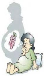 obat herbal untuk mengobati hamil anggur